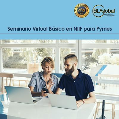 Seminario Virtual Básico en NIIF pymes