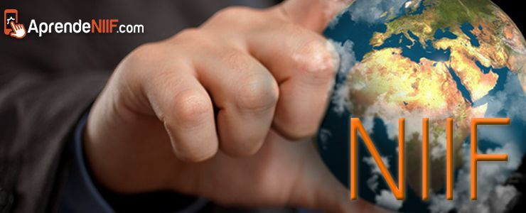 Las NIIF Privilegian la Información a Revelar