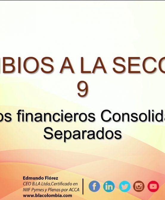 Modificaciones 2015 Seccion 9 Estado Financieros Consolidados y Separados